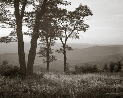 A Quiet Evening on the Blueridge