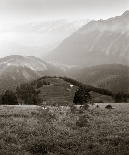 Alpine High Pasture