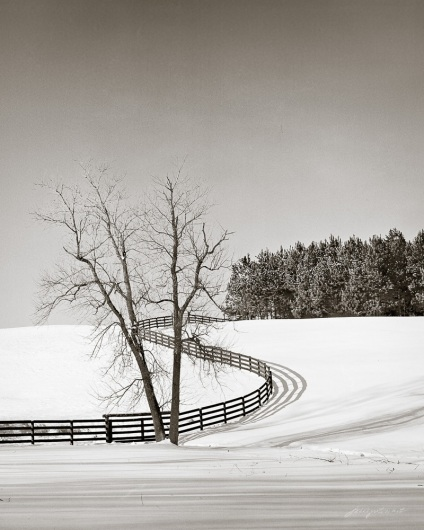 Curved Fence in Snow Loudoun County