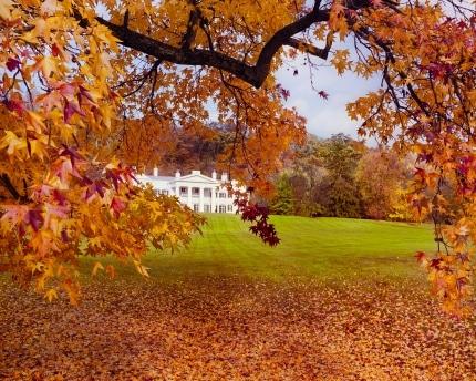 Morven Autumn