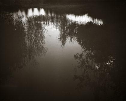 Night Falling on a Beaver Pond