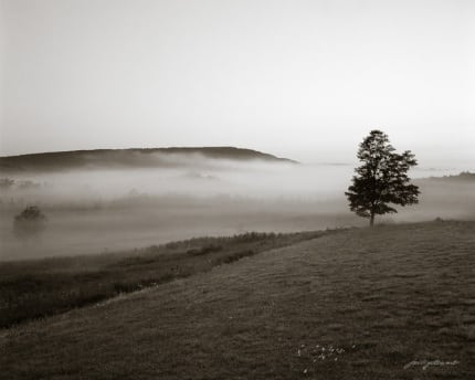 One Morning in Canaan Valley