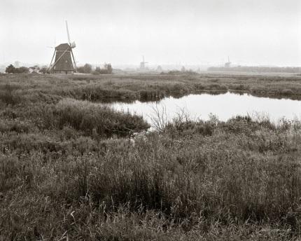 Windmills and Pond